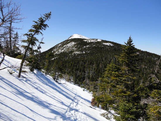 The Appalachian Trail on the way to Bigelow Mountain's West Peak