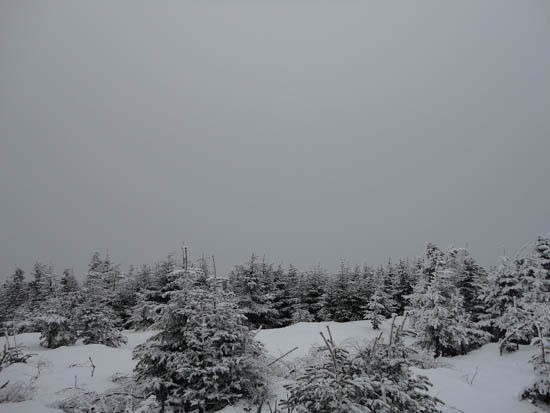 No views in light snow flurries from the Mt. Redington viewpoint - Click to enlarge