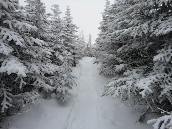 Crocker Mountain, South Crocker Mountain, Mt. Redington - Maine - January 9, 2011 Hike Trip